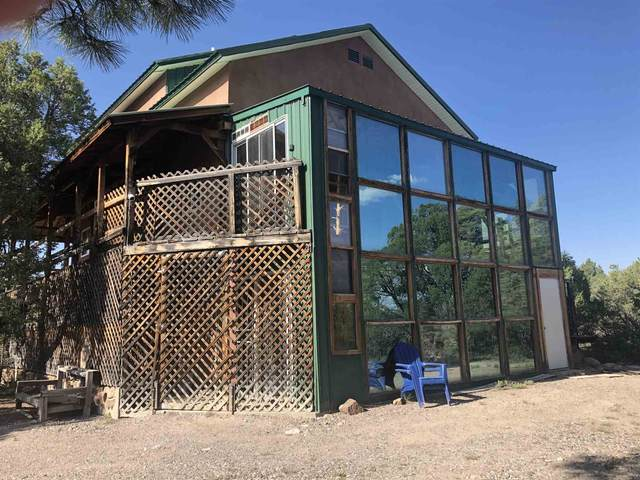 497 Highway 95, Chama, NM 87520 (MLS #202103306) :: Summit Group Real Estate Professionals