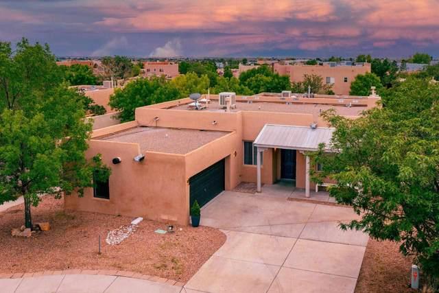 6500 Camino Rojo, Santa Fe, NM 87507 (MLS #202103326) :: Stephanie Hamilton Real Estate
