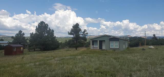 124 Elk Drive, Chama, NM 87520 (MLS #202103359) :: Summit Group Real Estate Professionals