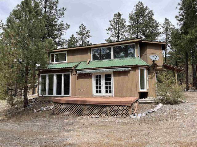 457 Brazos Rd, Chama, NM 87520 (MLS #202103376) :: Summit Group Real Estate Professionals