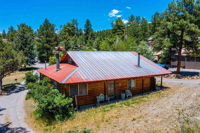 45 Private Drive 1710A, Los Ojos, NM 87575 (MLS #202103419) :: Summit Group Real Estate Professionals