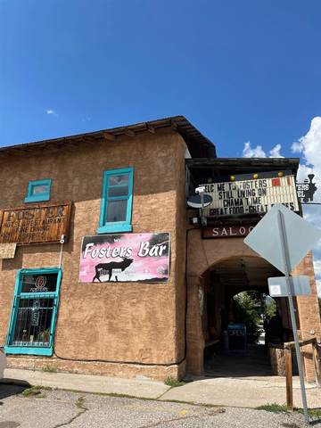 393 Terrace Avenue, Chama, NM 87520 (MLS #202103423) :: Summit Group Real Estate Professionals
