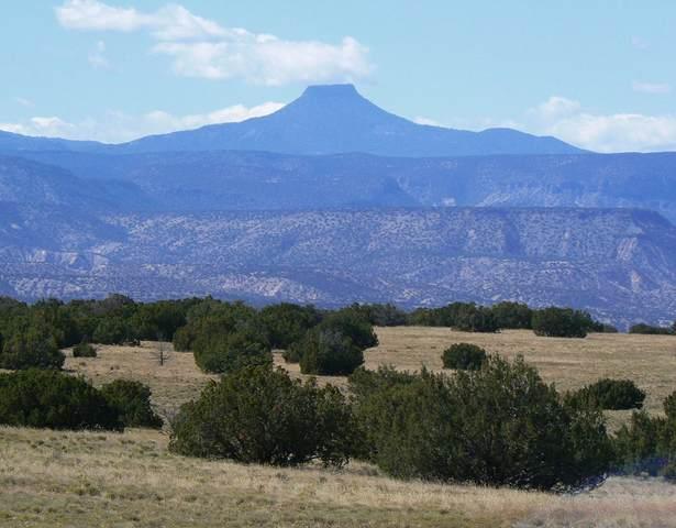 Lot B Corona Drive, Medanales, NM 87548 (MLS #202103431) :: The Very Best of Santa Fe