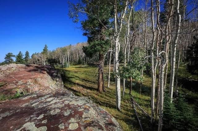 50 Strawberry Rock Road, Chama, NM 87520 (MLS #202103489) :: Berkshire Hathaway HomeServices Santa Fe Real Estate