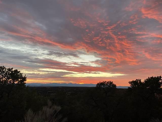 1008 Monte Serena, Santa Fe, NM 87501 (MLS #202103535) :: Neil Lyon Group | Sotheby's International Realty