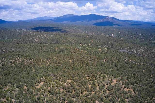 7800 Old Santa Fe Trail, Santa Fe, NM 87505 (MLS #202103541) :: Neil Lyon Group   Sotheby's International Realty