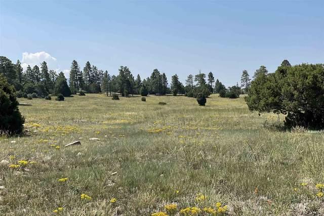 0 County Road 79, Truchas, NM 87578 (MLS #202103545) :: Berkshire Hathaway HomeServices Santa Fe Real Estate