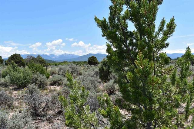 TBD Cr 77, Truchas, NM 87578 (MLS #202103581) :: Berkshire Hathaway HomeServices Santa Fe Real Estate