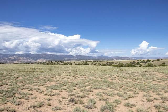Lot 9 Indian Ridge Ranch, Medanales, NM 87548 (MLS #202103604) :: The Very Best of Santa Fe