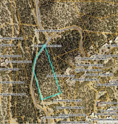 724 Paseo De Florencio, Santa Fe, NM 87501 (MLS #202103609) :: Neil Lyon Group | Sotheby's International Realty