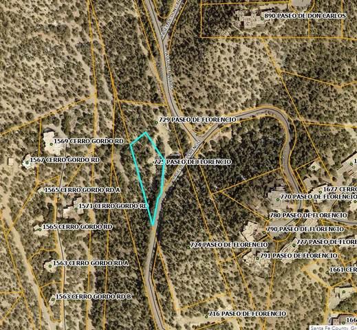 725 Paseo De Florencio, Santa Fe, NM 87501 (MLS #202103610) :: Neil Lyon Group | Sotheby's International Realty