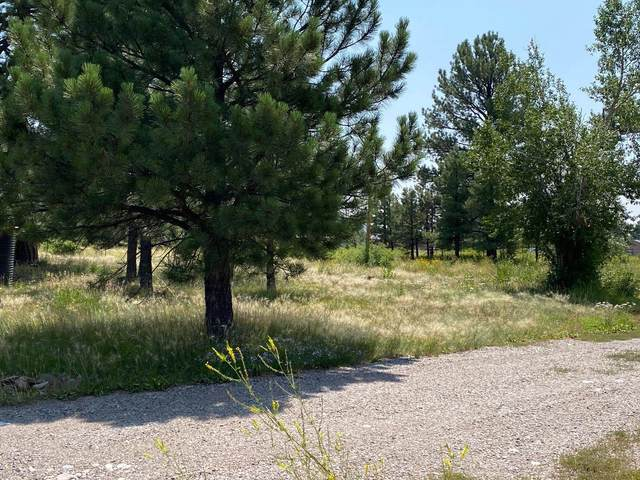 712 W 7th St, Chama, NM 87520 (MLS #202103684) :: Berkshire Hathaway HomeServices Santa Fe Real Estate