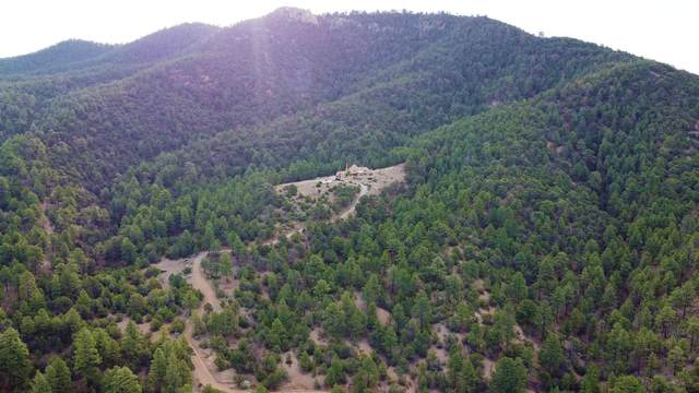 98 La Barbaria Trail, Santa Fe, NM 87505 (MLS #202103749) :: Neil Lyon Group   Sotheby's International Realty