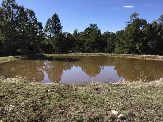 TBD Old El Rito Road, Canjilon, NM 87515 (MLS #202103774) :: Berkshire Hathaway HomeServices Santa Fe Real Estate