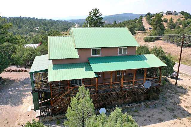 497 State Highway 95, Rutheron, NM 87551 (MLS #202103808) :: Summit Group Real Estate Professionals