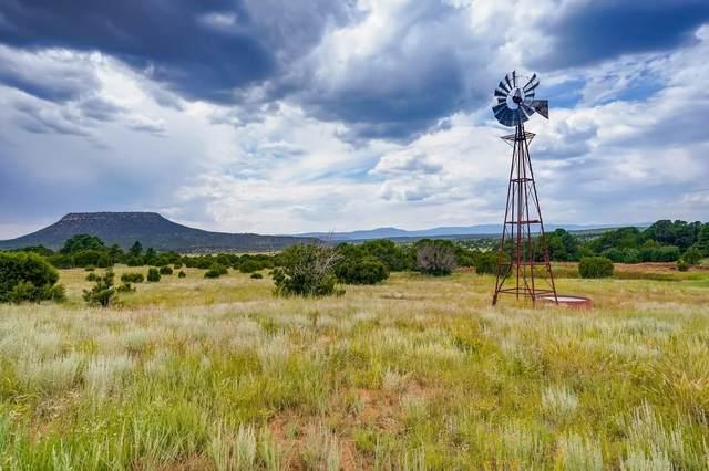 241 Cr A-20, Las Vegas, NM 87701 (MLS #202103820) :: Berkshire Hathaway HomeServices Santa Fe Real Estate