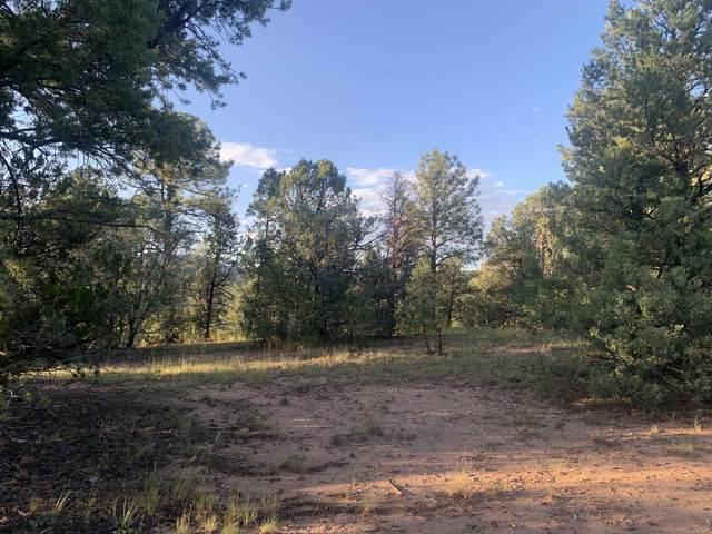 65 La Joya Road, Glorieta, NM 87535 (MLS #202103853) :: Berkshire Hathaway HomeServices Santa Fe Real Estate