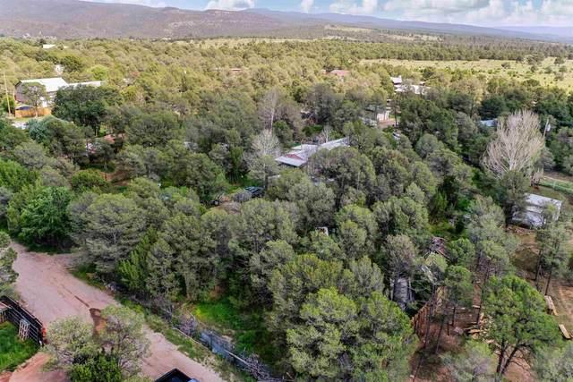 5 Pluma Azul, Pecos, NM 87552 (MLS #202103896) :: Berkshire Hathaway HomeServices Santa Fe Real Estate