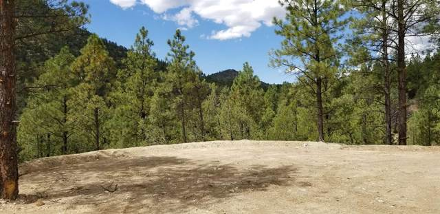Tract 1 Nm Highway 63, Pecos, NM 87552 (MLS #202103898) :: Berkshire Hathaway HomeServices Santa Fe Real Estate