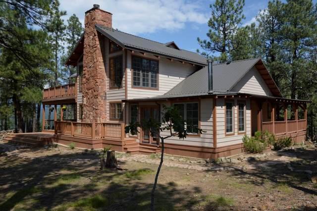 46 Skyline Trail, Rociada, NM 87742 (MLS #202103938) :: The Very Best of Santa Fe