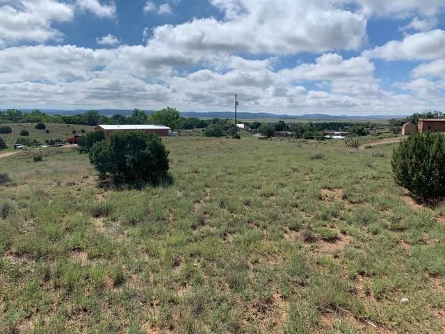 10 Chevy Ln, Galisteo, NM 87540 (MLS #202103992) :: Neil Lyon Group | Sotheby's International Realty