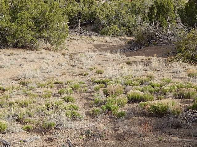 24 Copper Trail, Santa Fe, NM 87508 (MLS #202104024) :: Neil Lyon Group   Sotheby's International Realty