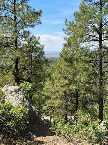 0 La Espuela 2, Chama, NM 87520 (MLS #202104062) :: The Very Best of Santa Fe
