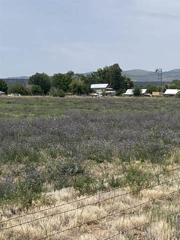 SR 215 Hwy 554, El Rito, NM 87530 (MLS #202104073) :: Berkshire Hathaway HomeServices Santa Fe Real Estate