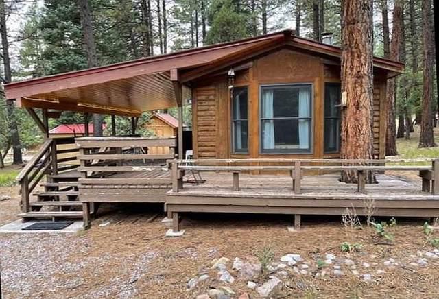 11 Cielo Azul, Chama, NM 87520 (MLS #202104104) :: Berkshire Hathaway HomeServices Santa Fe Real Estate