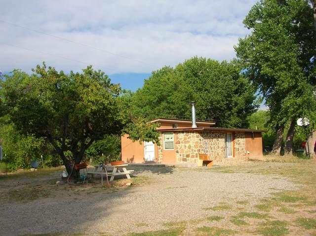58A Cr 130, El Duende, NM 87544 (MLS #202104119) :: Stephanie Hamilton Real Estate