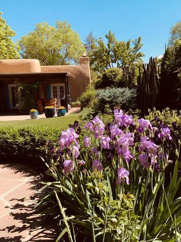644 Canyon Road #12, Santa Fe, NM 87501 (MLS #202104137) :: Neil Lyon Group   Sotheby's International Realty