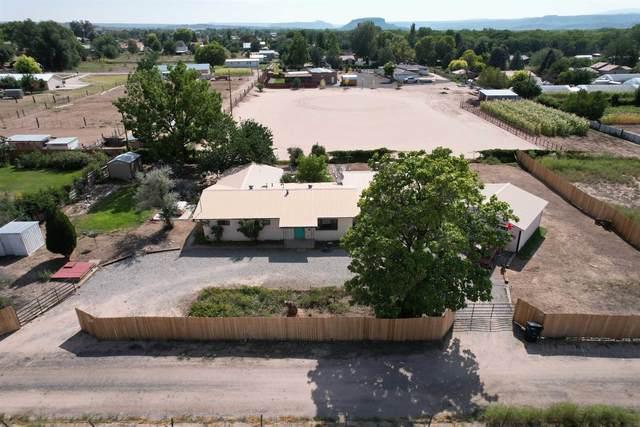 51 Guajolote Ln, La Mesilla, NM 87532 (MLS #202104179) :: Stephanie Hamilton Real Estate