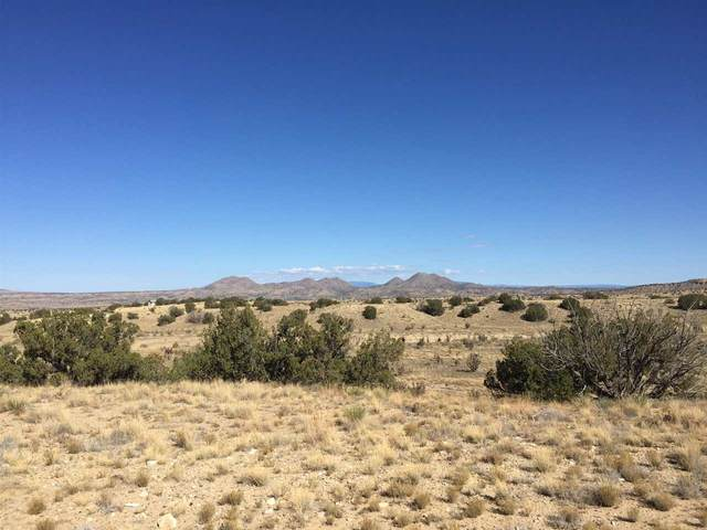 131 A Via Sol Estrella, Cerrillos, NM 87010 (MLS #202104190) :: Neil Lyon Group | Sotheby's International Realty