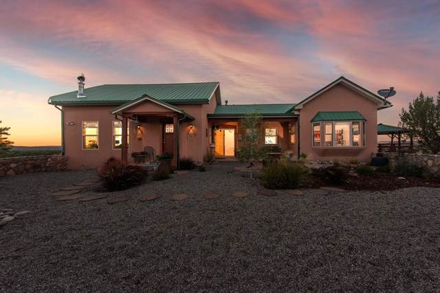 41 Private Drive 1614A, Medanales, NM 87548 (MLS #202104206) :: Stephanie Hamilton Real Estate