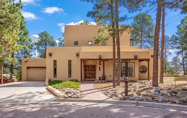 1324 La Mirada, Los Alamos, NM 87544 (MLS #202104232) :: Neil Lyon Group | Sotheby's International Realty