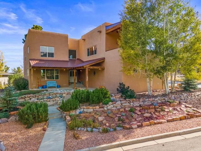 1630 Sonrisa, Los Alamos, NM 87544 (MLS #202104258) :: Neil Lyon Group | Sotheby's International Realty