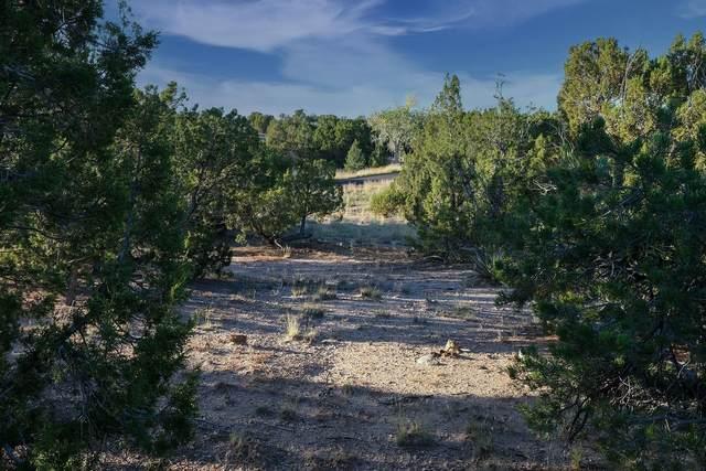 8 Shaman, Santa Fe, NM 87506 (MLS #202104270) :: Neil Lyon Group | Sotheby's International Realty