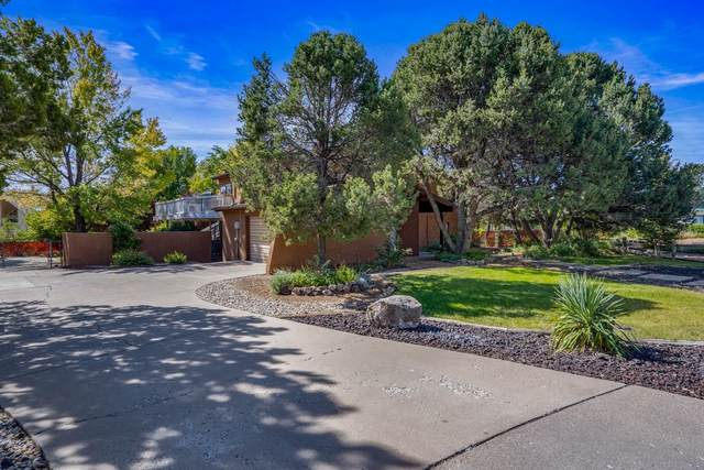 386 Richard Court, Los Alamos, NM 87544 (MLS #202104288) :: Neil Lyon Group | Sotheby's International Realty