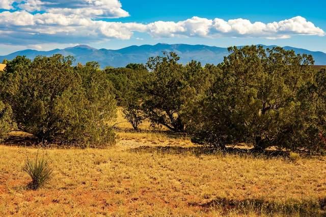 14 Entrada Descanso, Santa Fe, NM 87506 (MLS #202104299) :: Neil Lyon Group | Sotheby's International Realty