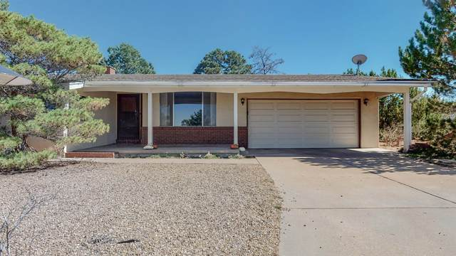 2 La Tusa, Santa Fe, NM 87505 (MLS #202104310) :: Summit Group Real Estate Professionals