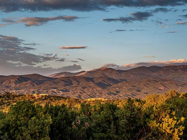 20 Calle San Martin, Santa Fe, NM 87506 (MLS #202104329) :: The Very Best of Santa Fe