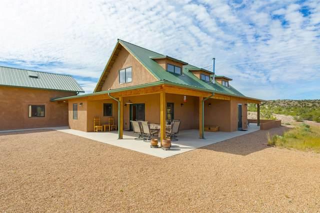 16 Paseo De Las Palomas, Cerrillos, NM 87010 (MLS #202104331) :: Neil Lyon Group | Sotheby's International Realty