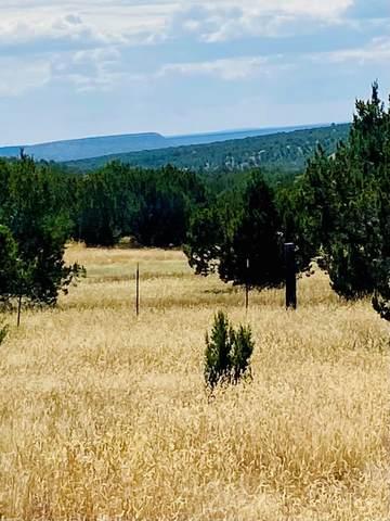 1004 County Rd B27, Los Montoyas, NM 87701 (MLS #202104334) :: The Very Best of Santa Fe