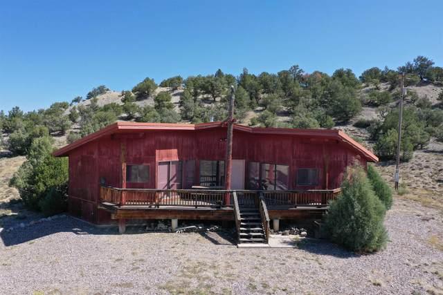 159 Pajarito, Tierra Amarilla, NM 87575 (MLS #202104366) :: The Very Best of Santa Fe