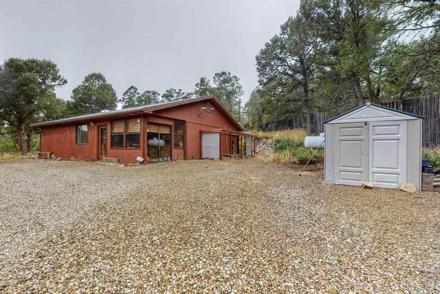 52 Milky Way, Tijeras, NM 87059 (MLS #202104411) :: Summit Group Real Estate Professionals