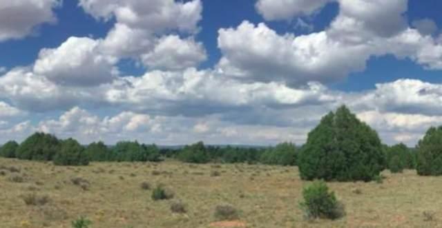 2.38 Ac. Torrance County, Edgewood, NM 87015 (MLS #202104436) :: Stephanie Hamilton Real Estate