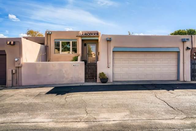 803 Faldas De La Sierra, Santa Fe, NM 87501 (MLS #202104437) :: Neil Lyon Group   Sotheby's International Realty