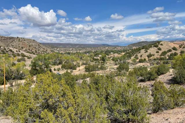 TBD County Road 67 Lot 27-A1, Dixon, NM 87527 (MLS #202104465) :: Neil Lyon Group | Sotheby's International Realty