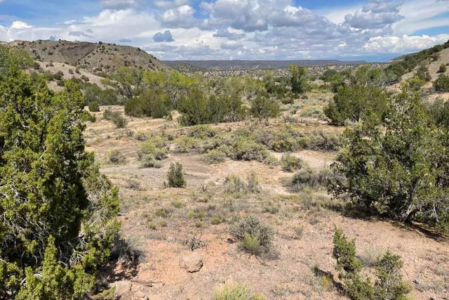 TBD County Road 67 Lot 27-A2, Dixon, NM 87527 (MLS #202104466) :: Neil Lyon Group | Sotheby's International Realty