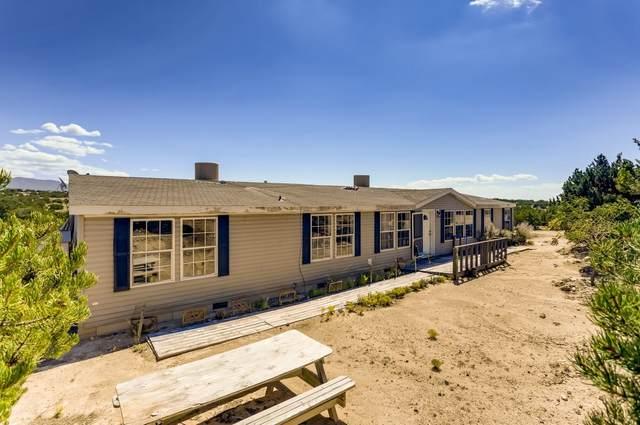 117 Camino Tres Arroyos, Santa Fe, NM 87507 (MLS #202104481) :: Neil Lyon Group | Sotheby's International Realty
